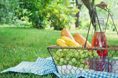 Vintage picnic basket with fruit. Bread and juice on blue blanket in a green summer garden Royalty Free Stock Photo