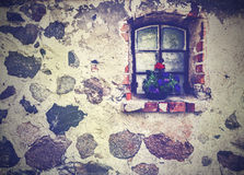 Vintage picture of flowers on the window, ancient building stone Stock Photography