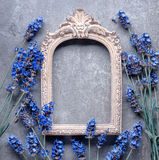 Vintage picture frame with lavender flower Royalty Free Stock Image