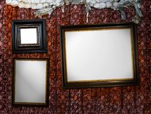 Vintage picture frames, grunge. Three vintage picture frames against a grungy, red, decorated wall Royalty Free Stock Images