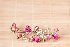 Vintage picture, nice soft background,small flowers Stock Photos