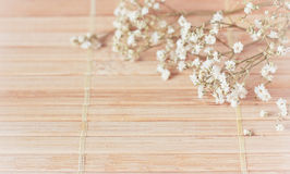 Vintage picture, nice soft background,small flowers Royalty Free Stock Photography