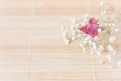 Vintage picture, nice soft background,small flowers Stock Image
