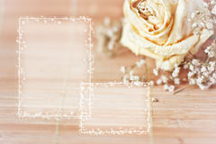 Vintage picture, nice soft background,small flowers Royalty Free Stock Photos