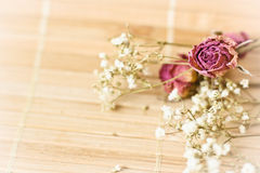 Vintage picture, nice soft background,small flowers Royalty Free Stock Images