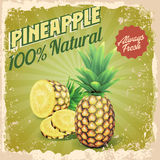 Vintage pineapple Royalty Free Stock Photography