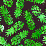 Vintage pineapple seamless pattern Royalty Free Stock Images