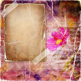 Vintage pink background royalty free stock image