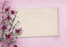 Vintage pink background with old post card and carnations. Vintage pink background with old post card and bouquet of carnations for congratulations, with space Royalty Free Stock Photo