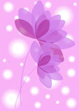 Vintage pink flowers background Royalty Free Stock Image