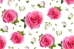 Vintage pink garden rose buttons and roses flowers, maidenhair f Royalty Free Stock Photos