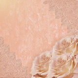 Vintage pink romantic background with roses and lace Royalty Free Stock Photography