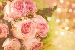 Vintage pink rose flower Stock Images