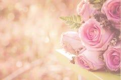 Vintage pink rose flower Royalty Free Stock Image