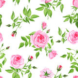 Vintage pink roses seamless vector print Royalty Free Stock Photos