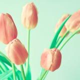 Vintage pink tulips Stock Photo