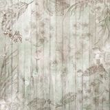 Boho Chic Fall Wood Background with Flowers and Feathers royalty free stock image