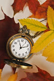 Vintage pocket watch and autumn leaves Stock Images