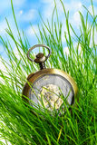 Vintage pocket watch in green grass Stock Image