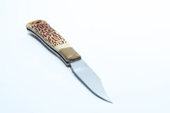 Vintage pocketknife with horn handle and brass guard - white bac Stock Photos