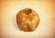 Vintage pomegranate Royalty Free Stock Image