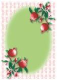 Vintage pomegranate pattern frame Royalty Free Stock Photography