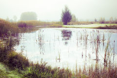 Vintage pond Royalty Free Stock Images