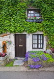Vintage porch with flowers. Belgium Royalty Free Stock Images