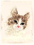 Vintage portrait of the cat Stock Photography