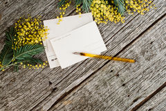 Vintage post cards mock up with yellow flowers mimosas and vintage pen ink on grey wooden background Royalty Free Stock Image