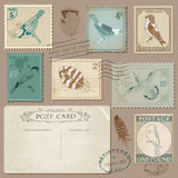 Vintage Postage Stamps with Birds Stock Image