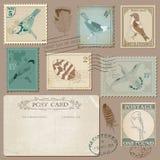 Vintage Postage Stamps with Birds. Vintage Postcard and Postage Stamps with Birds - for wedding design, invitation, scrapbook Stock Image