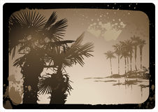 Vintage postcard. Vintage grungy sepia-toned palm tree background Stock Photo