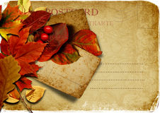 Vintage  postcard with autumn leaves Stock Photography