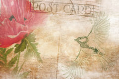 Vintage postcard background with bird and flower. Royalty Free Stock Images