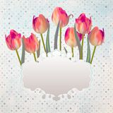 Vintage postcard with a beautiful tulips. EPS 10 Stock Photo