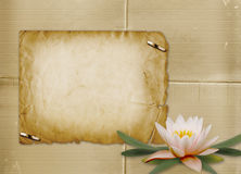 Vintage postcard with bunch of water lily Stock Photo