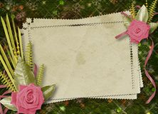 Vintage postcard for congratulation with roses Stock Images
