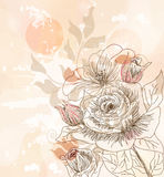 Vintage postcard with hand drawn roses Royalty Free Stock Images