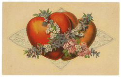 Vintage Postcard with Hearts Design Royalty Free Stock Photo