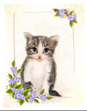Vintage postcard with kitten. Royalty Free Stock Photo