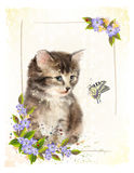 Vintage postcard with kitten. Stock Image