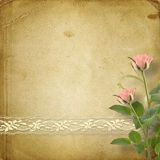 Vintage postcard with roses and ribbons Royalty Free Stock Photography