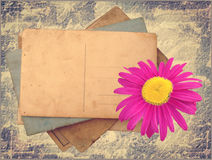 Vintage postcards. With pink flower royalty free stock photography