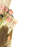 Vintage postcards, pen and dried roses Royalty Free Stock Photography