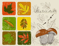Vintage poster with autumn plants Royalty Free Stock Photos
