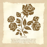 Vintage poster with bush of roses royalty free illustration