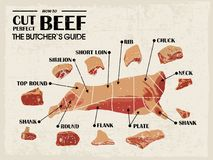 Vintage Poster Butcher diagram and scheme - Cow. Cut of meat set. Vector illustration. Royalty Free Stock Photos