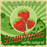 Vintage poster for strawberries farm Royalty Free Stock Images