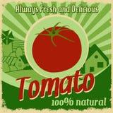Vintage poster for tomato farm stock illustration